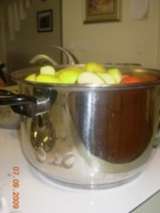 Making Applesauce: Family Style - Screen shot 2016 07 26 at 10 - Making Applesauce: Family Style