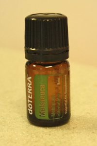Essential Oil Basics - Melaleuca Tea Tree 200x300 - Essential Oil Basics