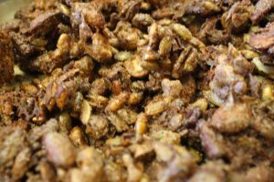 Roasted Maple Nuts - 13454158 10154012910118880 884909511 n 300x200 - Roasted Maple Nuts