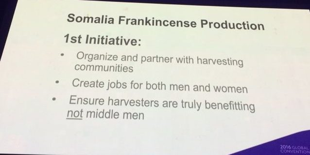 doTERRA Breaks the Pattern For Sourcing Essential Oils - Frankincense 1st Initiative e1490960407968 - doTERRA Breaks the Pattern For Sourcing Essential Oils