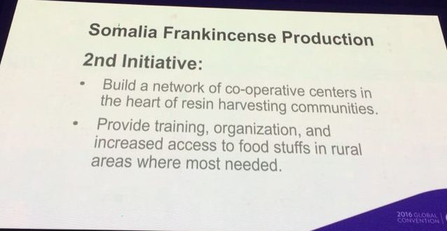 doTERRA Breaks the Pattern For Sourcing Essential Oils - Frankincense Somalia 2nd Initiative e1490960452619 - doTERRA Breaks the Pattern For Sourcing Essential Oils