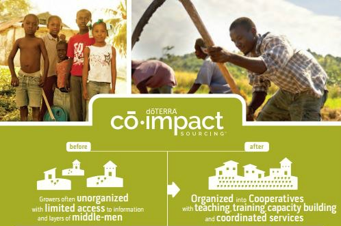 doTERRA's Co-Impact Sourcing - Co Impact Sourcing Graphic Very top half - doTERRA's Co-Impact Sourcing